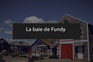 La baie de Fundy