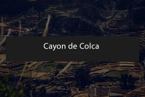 Une Journée au Canyon de Colca