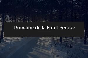 On patine au domaine de la Forêt Perdue