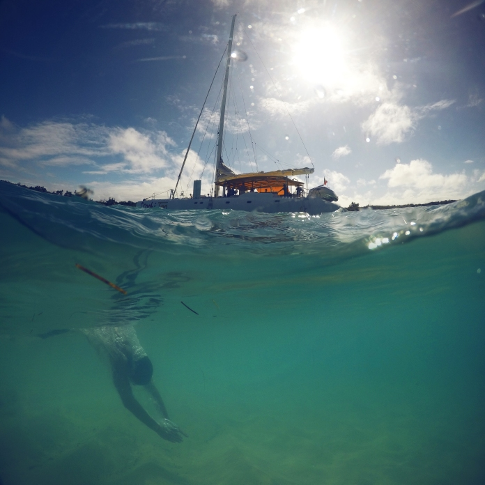 Catamaran - scoobidoo