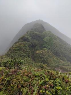 Montagne Pelée via L'Aileron Trail